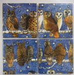4 Ceramic Coasters in Emma Bridgewater Night Owls